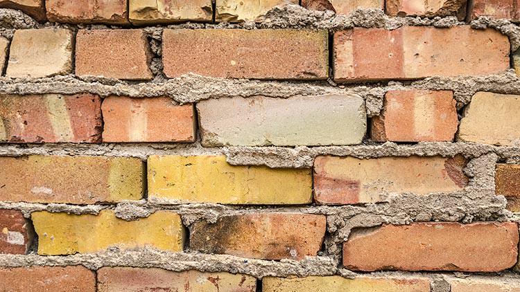 Housing law disrepair